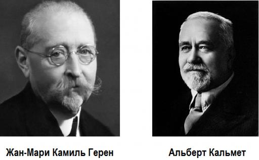 Жан-Мари Камиль Герен и Альберт Кальмет