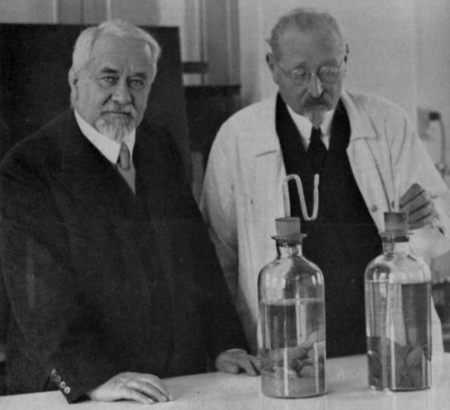 Альберт Кальмет и Жан-Мари Камиль Герен