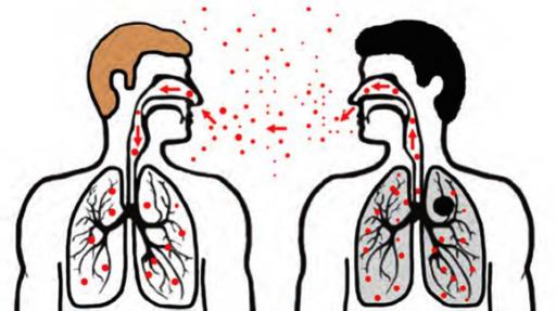 Попадание M. tuberculosis в организм человека