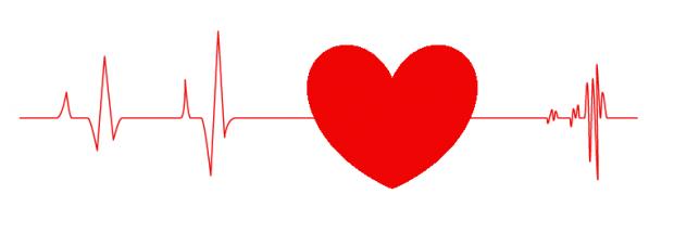 Частота биения сердца