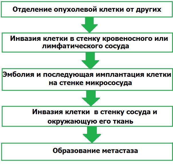 Образование метастаз
