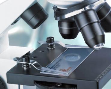 Гистологическое исследование