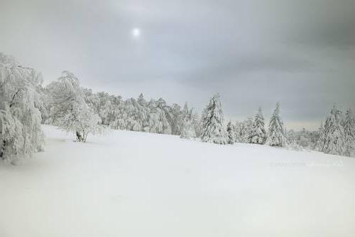 Недостаток солнца в зимний период
