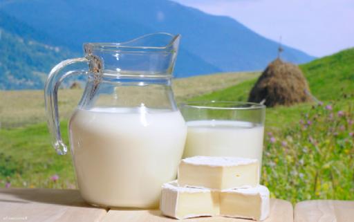 Молоко и сыр