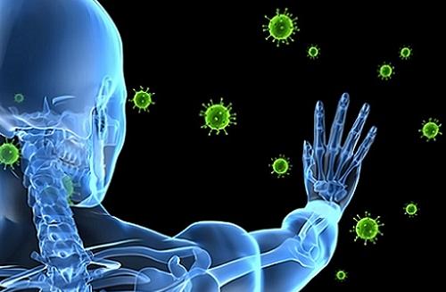 Попадание микобактерий внутрь организма человека